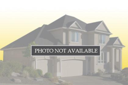 176 Fallow, 20008874, Georgetown, Single Family Residence,  for sale, Realty World TNT